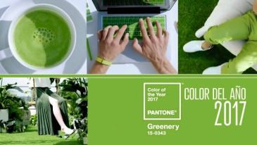color-del-2017-GREENERY-PANTONE